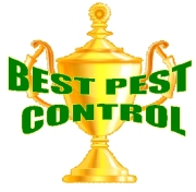 Best Pest Logo