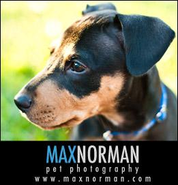 MaxNorman1